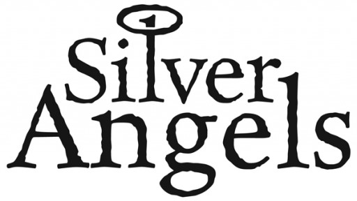 Silver Angels Home Based Services in Elizabethton, TN